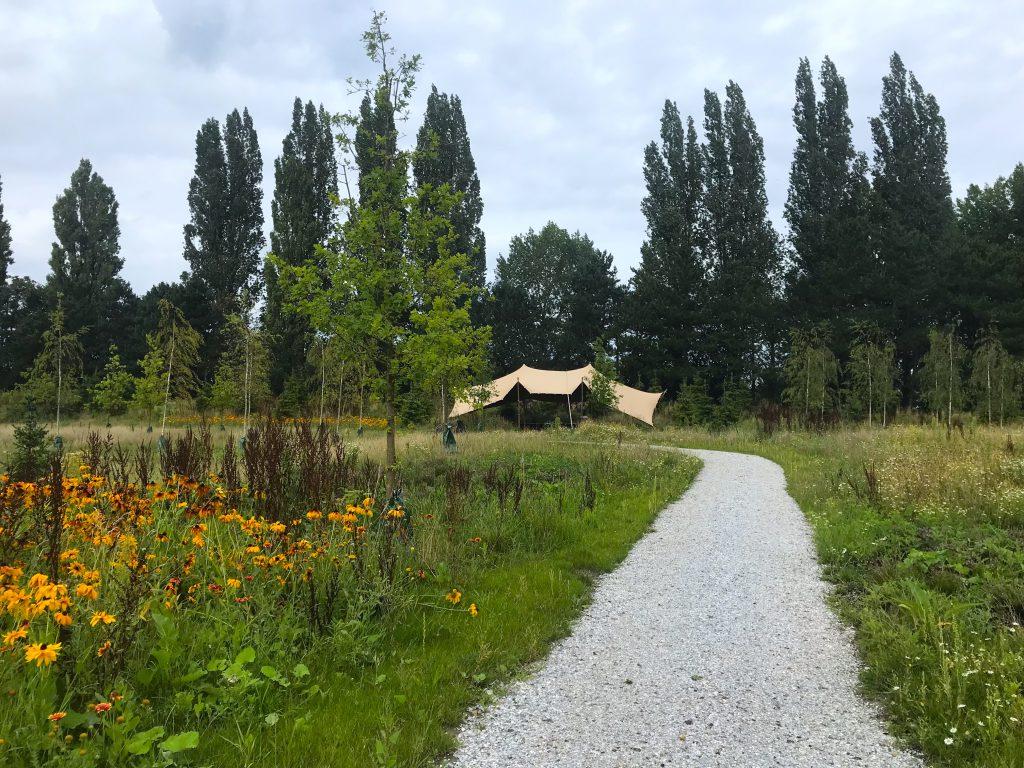 Natuurbegraafplaats Rotterdam een natuurlijke begrafenis